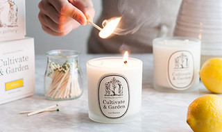 Scented Candles + Diffusers