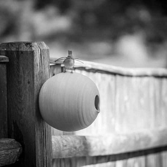 Fieldstone Bird Pod