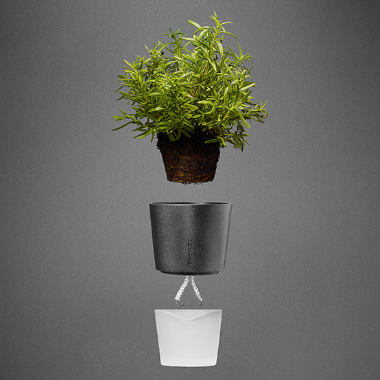 Medium Self-Watering Herb Pot in Dark Grey