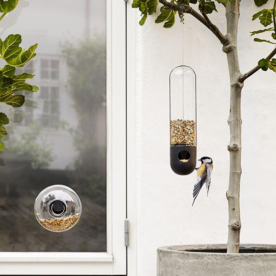 Bird Feeder Tube