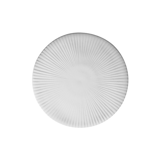 Canopee 6 inch Disk