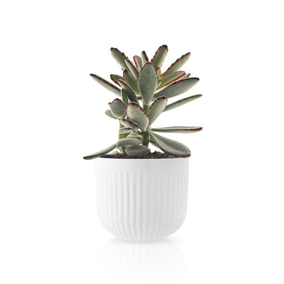 Legio Nova Small Flower Pot
