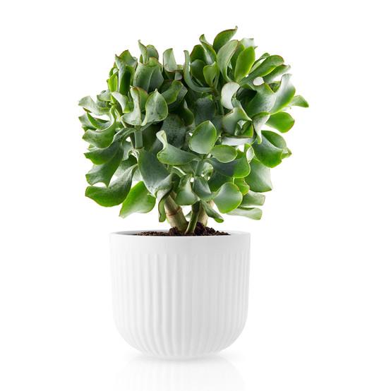 Legio Nova Large Flower Pot