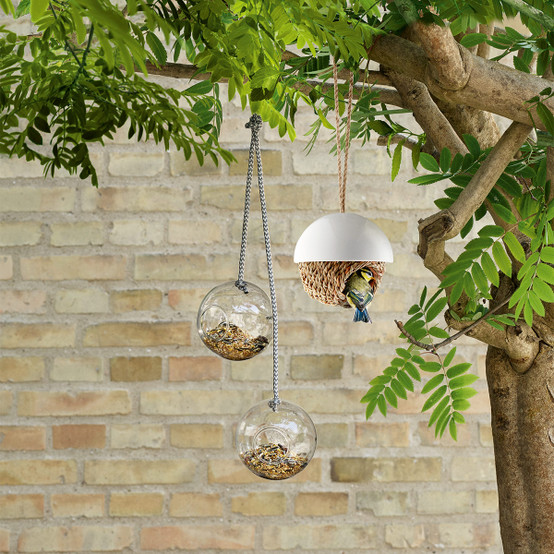 Bird Shelter