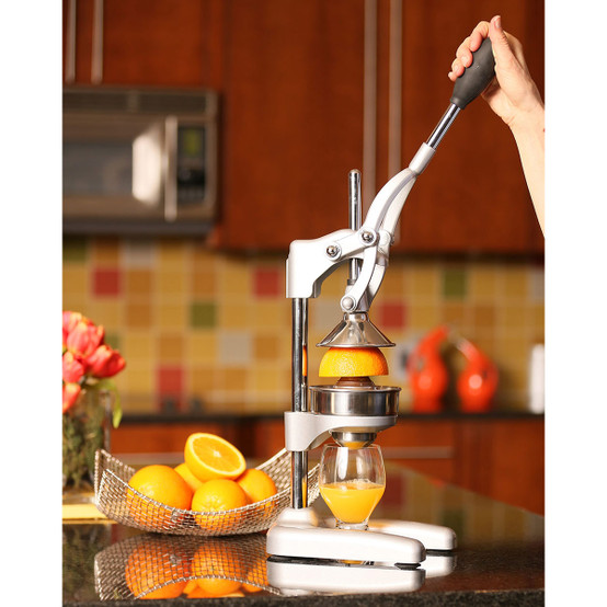 Citrus Press in Polished Silver