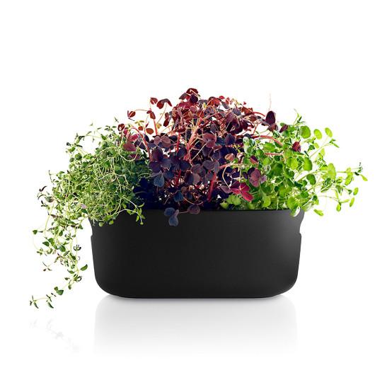 Self-Watering Herb Organizer in Black