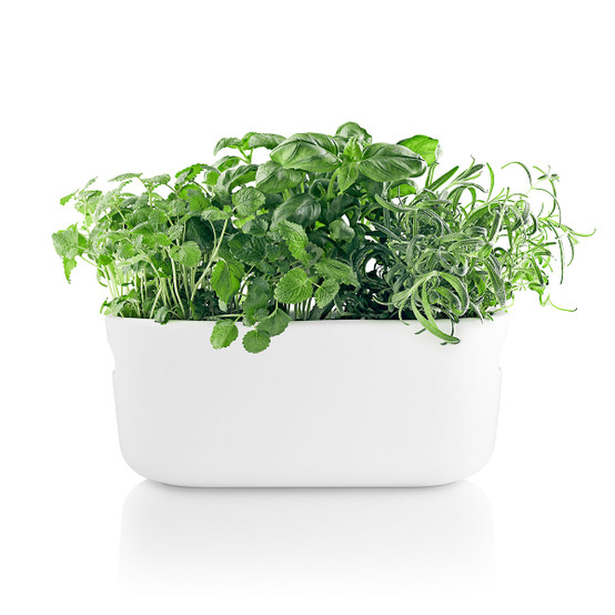 Self-Watering Herb Organizer in White