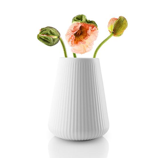 6.75 in Legio Nova Vase