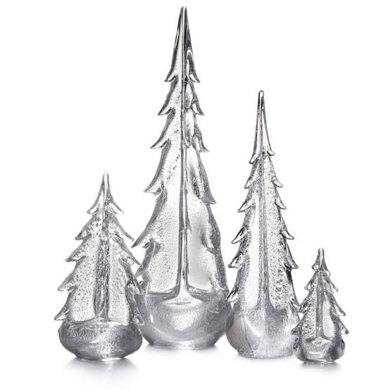 Silver Leaf Evergreen Tree