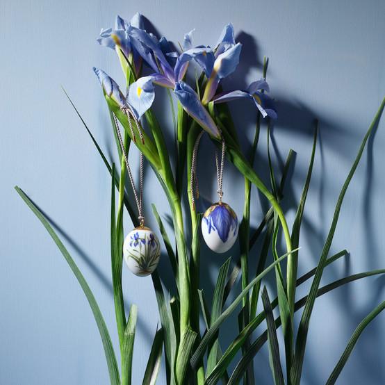 Easter Egg Iris Petals 2.5 inches