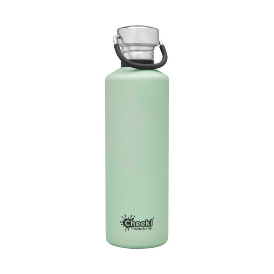 Stainless Steel Insulated Classic Bottle in Pistachio