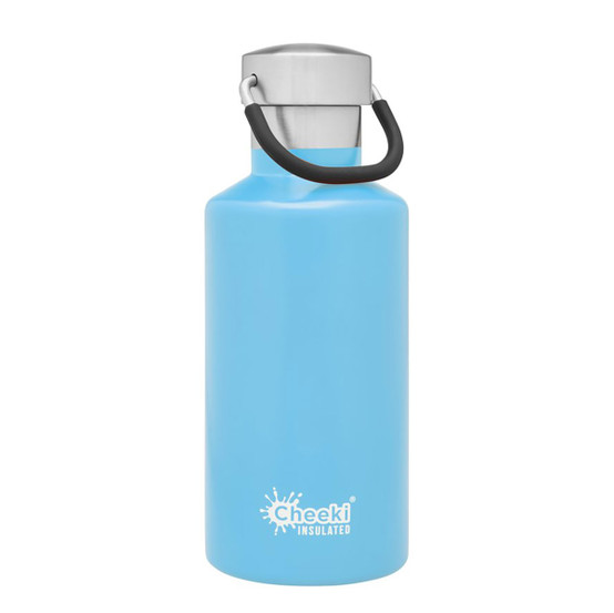 Stainless Steel Insulated Classic Bottle in Surf
