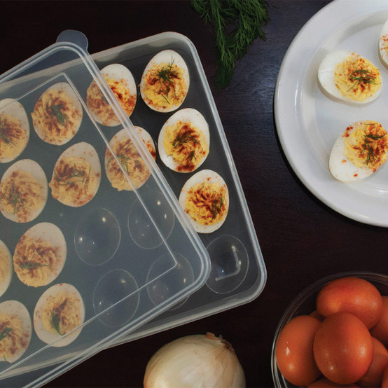 24 Cavity Egg Tray with Clear Lid