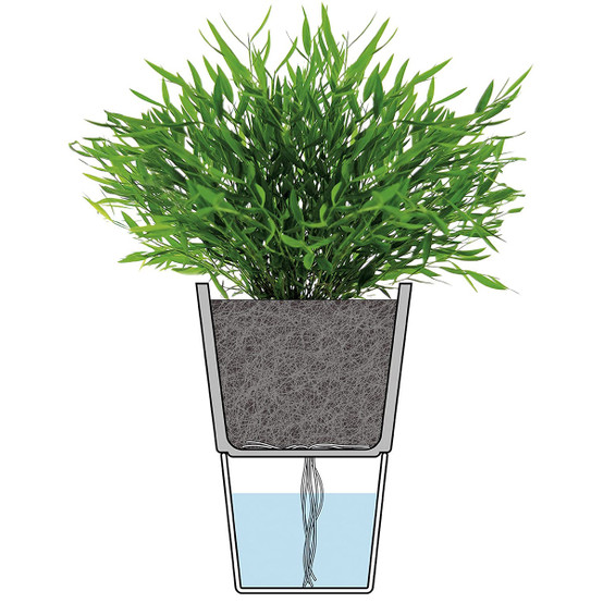 Herb Pot with Frosted Glass