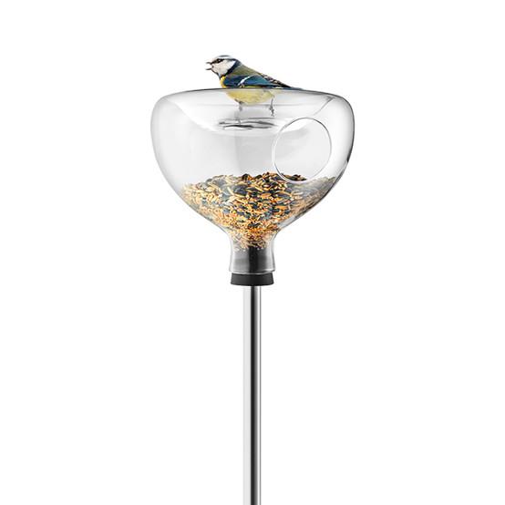Glass Bird Table With Bird Bath