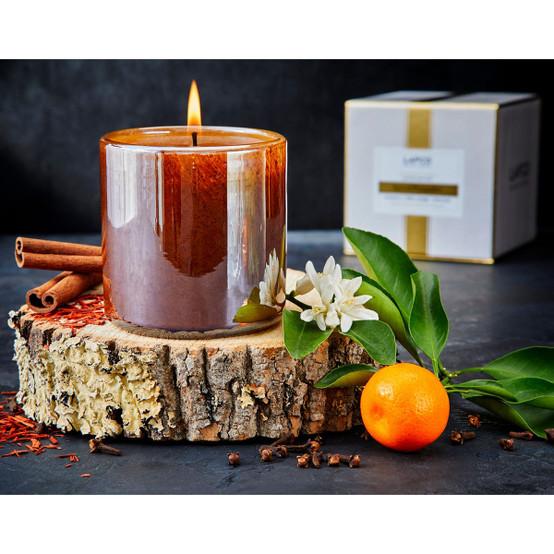 15.5 Oz Spiced Pomander Signature Candle