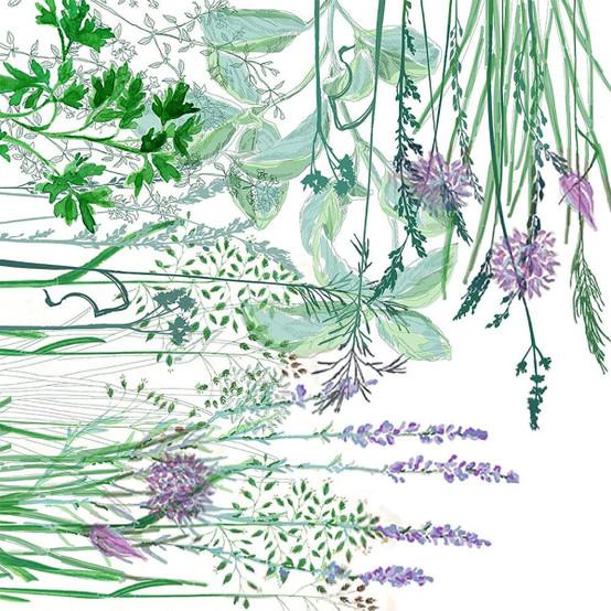 Jardin Aromatique Floraison Napkin