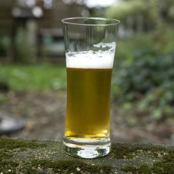 Basic Beer Lager (Medium)
