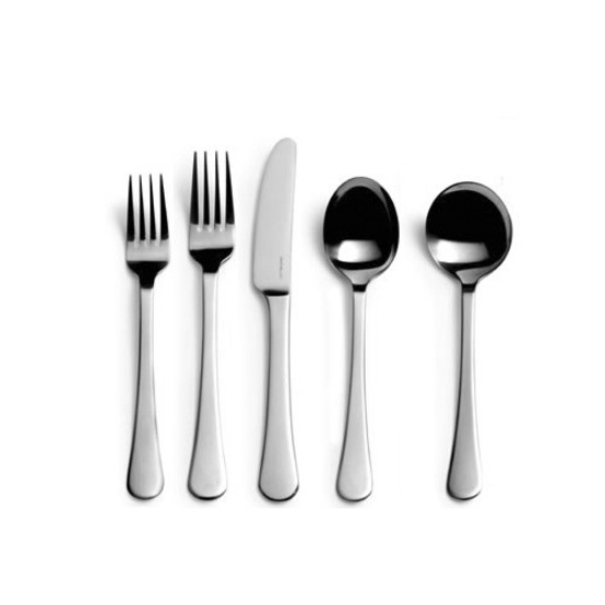 Classic Stainless Steel 5 piece Place Setting