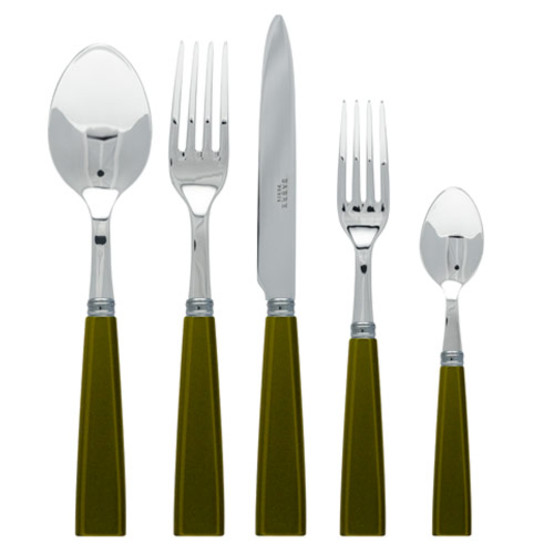 Natura 5 Piece Place Setting-Olive