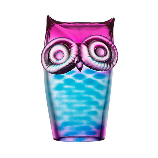 """My Wide Life"" Owl - Blue/Pink"